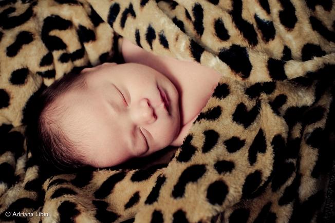Newborn Davi-58